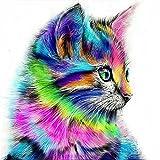 Malen nach Zahlen Kits Diy Leinwand Ölgemälde für Kinder, Studenten, Erwachsene Anfänger - bunte Katze 16 x 20 Zoll mit Pinsel und Acrylpigment, Ohne Rahmen
