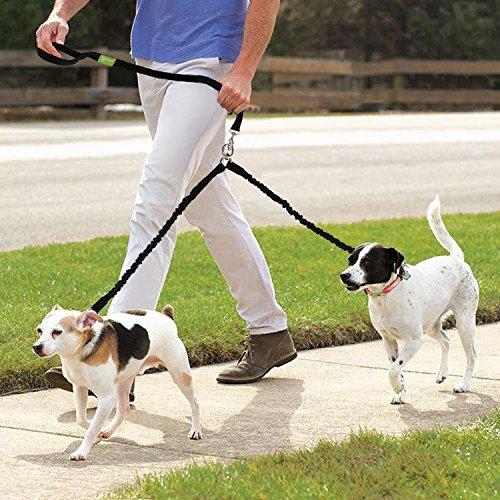Pecute Hundeleine Doppelleine 2 Hunde Reflektierende Elastische Nylonband 1.6 m Schwarz