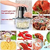 HomeFast Electric Food Chopper, Food Processor, Bowl Blender Grinder for Meat, Vegetables, Fruits and Nuts, Fast & Slow 2-Speed