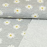 Baumwolljersey Doubleface Gänseblümchen & Streifen Grau