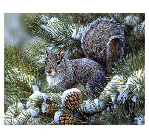 Lkrou DIY 5d Diamant Diamant Stickerei kleine eichhörnchen auf Kiefer kreuzstich Strass mosaik malerei Dekoration handgemachte 40x50 cm (Eichhörnchen-montage-kit)
