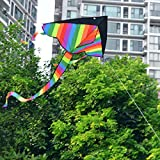 Enlarge toy image: Vicoki 2 Piece Rainbow Kite for Kids Adults for Outdoor Games Activities