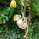 Makakenaffenbaby am Seil 5