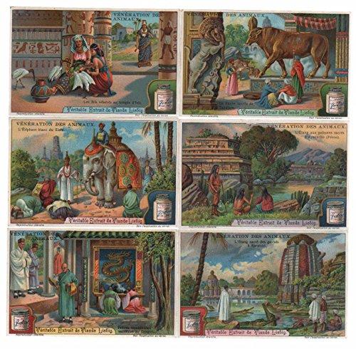 Veneration des animaux Tiere Religion Verehrung Lithographie lithograph Liebig
