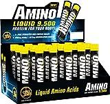 All Stars Amino 9500 Liquid - 18 x 25 ml Fläschchen, Schwarze Johannisbeere, 1er Pack (1 x 450 ml)