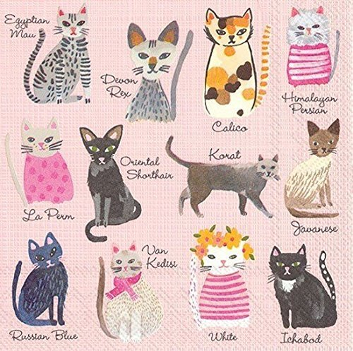cool-cats-paper-beverage-napkins-c009000-by-boston-international