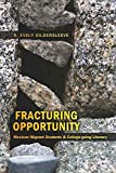 Fracturing Opportunity: Mexican Migrant Students and College-going Literacy (Counterpoints, Band 362)