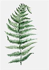 Beiguoxia Nordic stile pastorale verde pianta foglie moderno e minimalista pittura decorativa