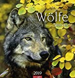 Wölfe - Kalender 2019
