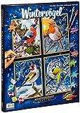 Schipper 609340661 Dipingere con i numeri - 4 quadri da dipingere, motivo: uccellini d'inverno, ognuno 18 x 24 cm