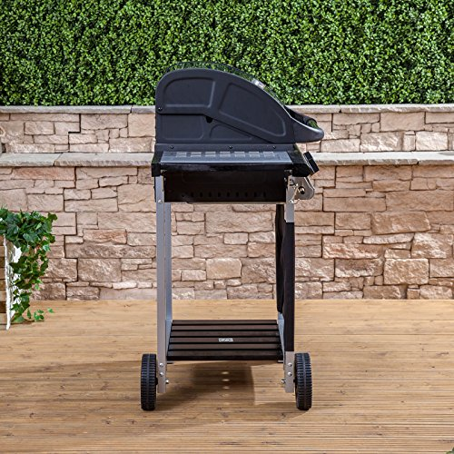 Everest 2 Burner Gas Barbecue - Stainless Steel, Cast Iron Burners
