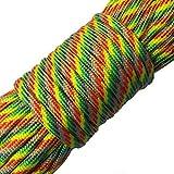 FuckTheFear Paracord 550-100 ft (30 m) reißfeste Survival Fallschirm-Schnur aus Nylon 4mm - Typ III mit 7 Kern-Strängen in vielen Farben - Das Seil für Kreative und Macher (Rainbow)