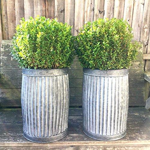 Vintage Style grau Zink verzinkt Metall Garten Übertopf Badewanne Blumentopf Barrel x1