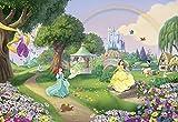 'Komar 8-449Papier peint photo en papier'Disney Princess Rainbow Taille 368x 254cm (Largeur x hauteur), 8pièces, avec, colle fabriqué en Allemagne, multicolore