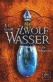 Zwölf Wasser Buch 2: In die Abgründe: Roman (12-Wasser-Trilogie)