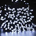 Frostfire Moonzazzle - 100 LED Solar Fairy String Lights