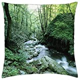 Great Smoky Mountains National Park, Tennessee - Throw Pillow Cover Case (18