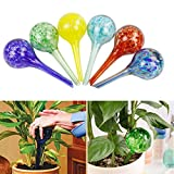 6pcs Outdoor Garden Plant Watering Spheres Globes Pot Waterers Glass Colourful