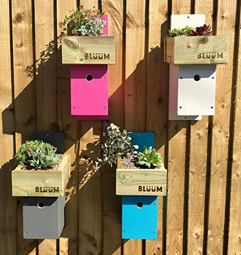bird-box-nesting-birdhouse-with-green-organic-living-roof-planter-white-blue-grey-or-pink-colour-eas