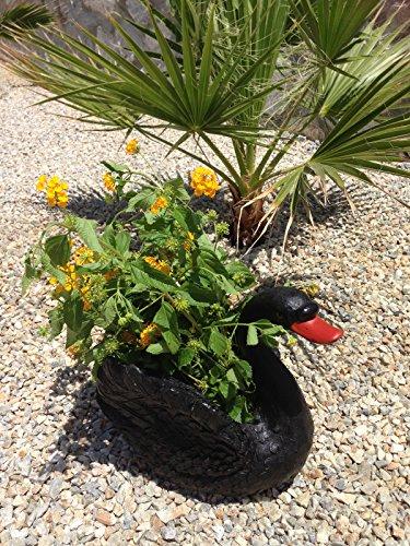 Design Schwan SCHWARZ 7150 mit Blumentopf Garten Gartenzwerg Figuren Dekoration Zwerg Schwäne