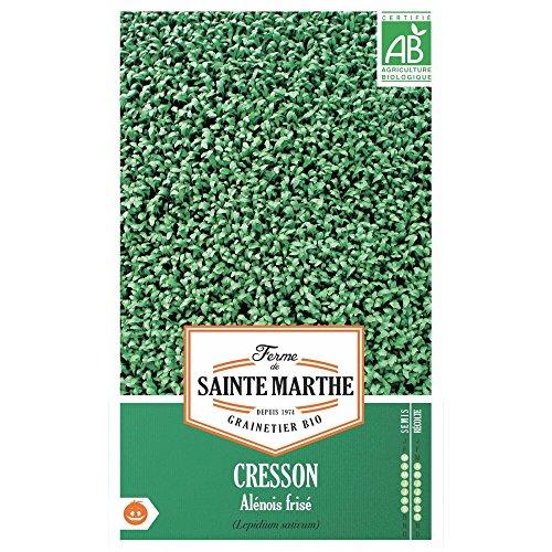 ferme-de-st-marthe-graines-bio-de-cresson-alenois