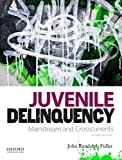 Juvenile Delinquency: Mainstream and Crosscurrents by John Randolph Fuller (2012-07-18)
