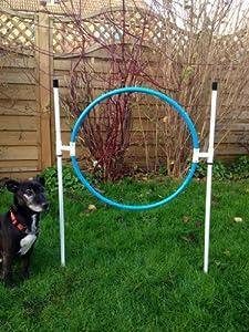 Bâton dans le sol d'entraînement Créoles pour chien pour l'agilité (en raison des Amazones NEUF affranchissement politique nous NE Pouvons Post Cet Article au au Royaume-Uni (Angleterre, Pays de Galles et l'Écosse uniquement))
