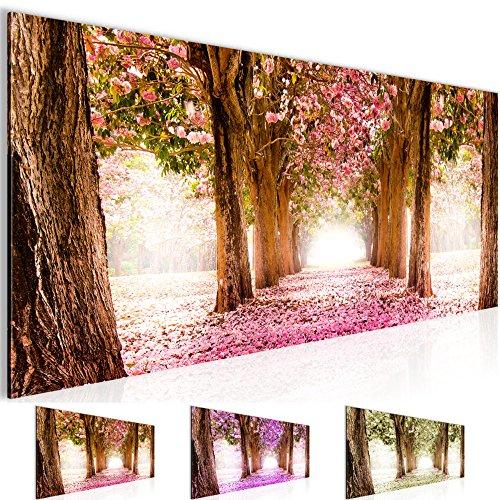Bilder – Wald Allee Bild – Vlies Leinwand – Kunstdrucke -Wandbild – XXL Format – mehrere Farben und Größen im Shop – Fertig Aufgespannt !!! 100% MADE IN GERMANY !!! – 605612+55P