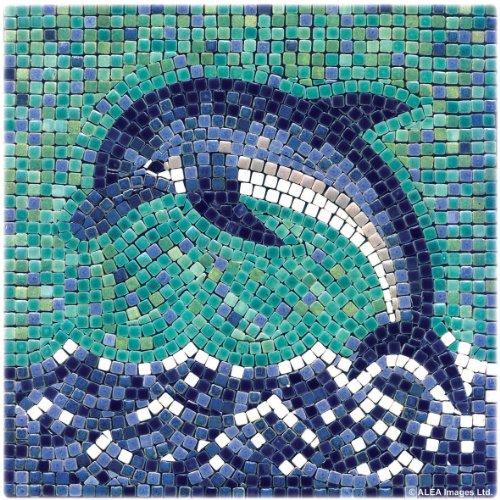 mosaico-kit-20x20-cm-delfino