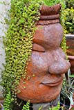 Flower Pot Face Garden Journal