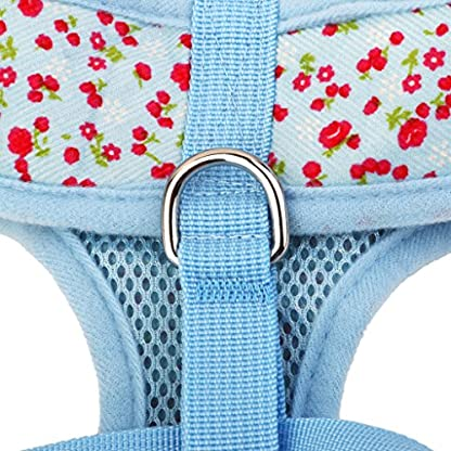 Floral Pattern Tiny Small Dog Harness Leash Lead Walking Chest Strap (S, Blue) 8