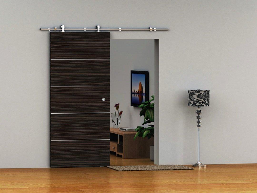 Modern Interior Sliding Doors Tp Ss02 Satin Nickel Brushed Stainless Steel Sus304 Modern Barn