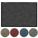 casa pura Premium Fußmatte/Sauberlaufmatte für Eingangsbereiche | Fußabtreter mit Testnote 1,7 | Schmutzfangmatte in