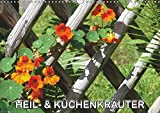 Heil- und Küchenkräuter (Wandkalender 2019 DIN A3 quer): Heilkräuter und Küchenkräuter im Garten (Monatskalender, 14 Seiten ) (CALVENDO Natur) -
