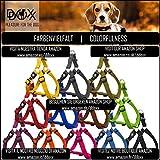 Hundegeschirr Step-In aus Premium-Nylon verschiedene Farben und Groessen XXS, XS, S, M, L, XL: Brustgeschirr, Laufgeschirr, Fuehrgeschirr, verstellbar, Zugentlastung, stabil, bequem, weich, farbig, fuer große und kleine Hund (Leine und Halsband separat erhaeltlich) (Farbe Schwarz, Größe XS – 1,0 x 32-44 cm) - 5