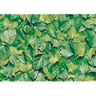 alkor DecoDesign F3800022 Selbstklebefolie, Folienmaß 45 x 200 cm, Dicke 0, 10 mm, Grün