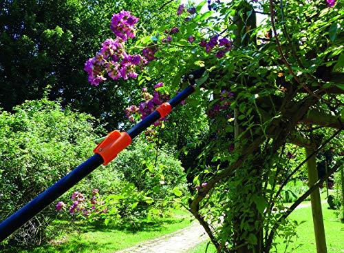 Garten Primus Rosenschere, RosenKavalier teleskopierbar - 3