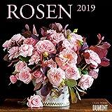Rosen - Kalender 2019 - Clay Perry - DuMont-Verlag - Broschurkalender mit Platz zum Eintragen - 30 cm x 30 cm (offen 30 cm x 60 cm)