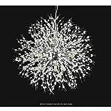 CHRISTMAD Geschenk Pendelleuchte Einfache Löwenzahn Kronleuchter Kreative LED Kunst Wohnzimmer Restaurant Licht Hotel Bar Leuchten,Silver-8Diameter50CM