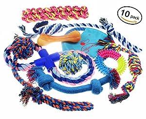 Lobeve Dog Toys Lot de 10Ensemble cadeau, variété Ensemble de chiens de compagnie jouet pour Medium pour petit chien