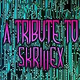 A Tribute to Skrillex
