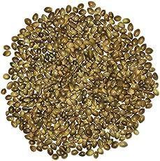 PetNest Premium Hemp Seed Bird Food, 450 g