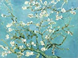 Posterlounge Leinwandbild 40 x 30 cm: Mandelblüte von Vincent Van Gogh/ARTOTHEK - fertiges Wandbild, Bild auf Keilrahmen, Fertigbild auf echter Leinwand, Leinwanddruck