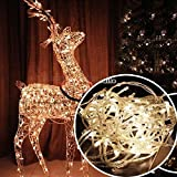 #4: Citra LED RICE string strip Warm White decoration lights 18 METRE LONG - Diwali / Festival / Wedding / Gifting / Xmax / New Year - The perfect Gifting in 'Gift' Box!