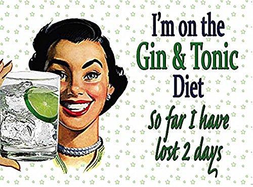 Ich bin auf die Gin & Tonic Ernährung, also weit I have lost 2 Tagen. Lustig zeichen mit 50er jahre damen halten glas Metall/Stahl Wandschild - 15 x 20 cm (Chinesisch-tonic)