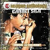 Songtexte von Garnett Silk - Music Is the Rod: Reggae Anthology