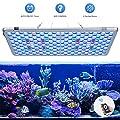 Bozily Aquarium Beleuchtung LED, Vollspektrum Korallenriff Lampe für Aquarium Tanks, APP Steuerung mit Auto EIN/Aus, Dimmbar & Timer für das Wachstum von Pflanzen im Salzwasser Süßwasser von Bozily