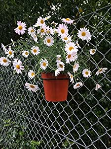 Plant Pot Holders For Chain Link Fence To Hang 6 Quot Pots On