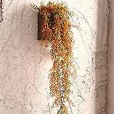 Unbekannt Health UK Accessories- Startseite Anhänger Kreative Simulation Pflanze Aufhänger Retro Wohnzimmer Schlafzimmer Wandbehang Dekorative Blumentöpfe Welcome (Farbe : A)