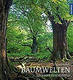 Baumwelten: und ihre Geschichten